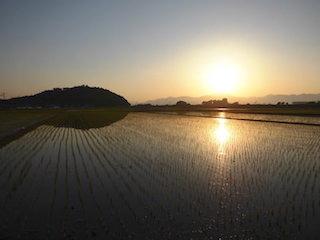 滋賀の田園風景と朝日(しがトコ).jpg