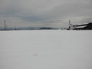 2017年(平成29年)東近江市(能登川地区)雪景色.jpg