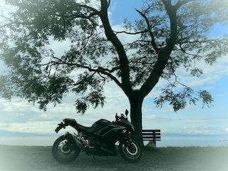 あのベンチとツーリングのバイク.jpg