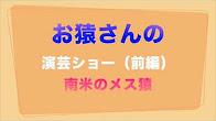 お猿さんの楽しい演芸ショー(前編) 南米のメス猿 (YouTube 動画).jpg