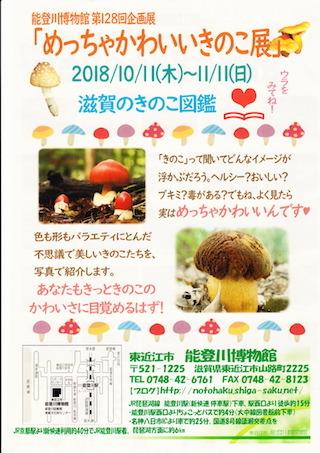 めっちゃかわいいきのこ展.jpg