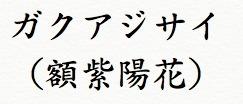 ガクアジサイ(額紫陽花)仕組み.jpg