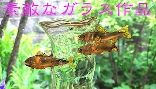 ガラス細工の手作り作品(花器,グラス,オブジェ,アクセサリー).jpg