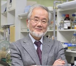 ノーベル賞の大隅良典(おおすみよしのり).jpg