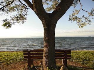 ベンチのある風景.jpg