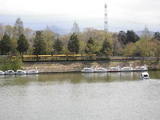 ペダルボートがある関西の公園.jpg