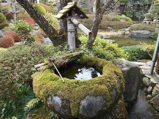 五個荘近江商人屋敷の中江準五郎邸の庭園.jpg