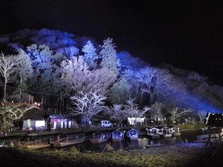京都の嵐山ライトアップ.jpg