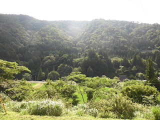 伊吹山西麓地域の新緑の山の景色.jpg