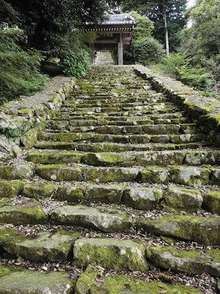 伊崎寺の苔の石段.jpg