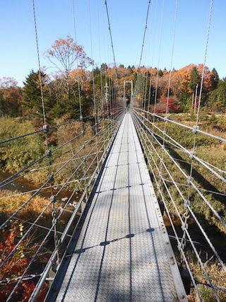 保良の宮橋は珍しい鉄道と川の両方に架かる吊り橋.jpg