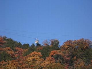 八幡山山頂ロープウェイと紅葉.jpg