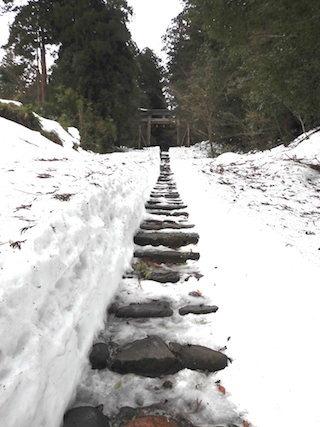 冬の平泉寺白山神社.jpg