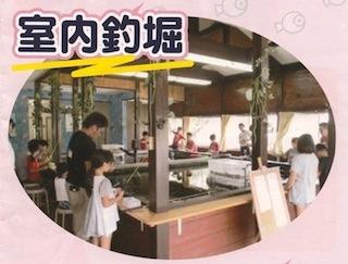 室内釣り堀(金魚、鯉など).jpg