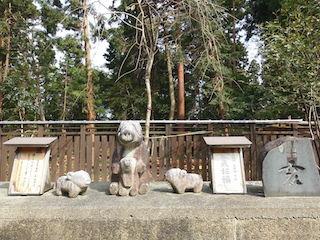 干支のお守り石(亥いのしし).jpg