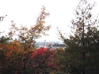延命公園から見た東近江市街地の風景.jpg