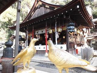 日牟禮八幡宮の初詣神社.jpg