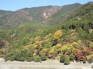東近江市の山の紅葉