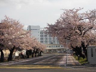 東近江総合医療センター.jpg