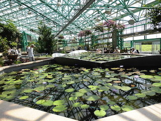 水生植物のアトリウム温室.jpg