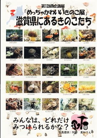 滋賀県のキノコの種類.jpg