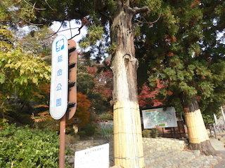 滋賀県東近江市の延命公園.jpg
