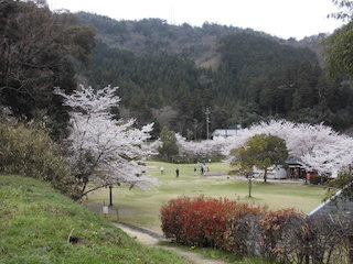 滋賀県東近江市の繖公園(きぬがさこうえん).jpg