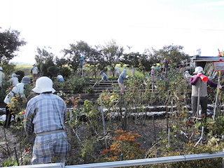 滋賀県東近江市山上町の案山子畑.jpg