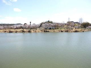 滋賀県湖南市にごり池自然公園.jpg