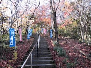 猪子山(滋賀県東近江市の山歩き).JPG
