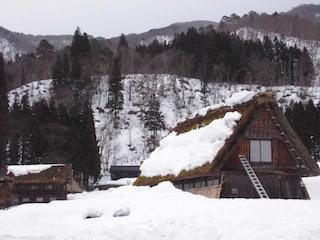 白川郷の合掌造り雪下ろし.jpg