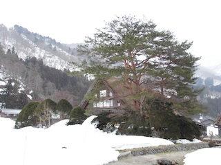 白川郷の和田家住宅.jpg