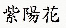 紫陽花アジサイ漢字.jpg