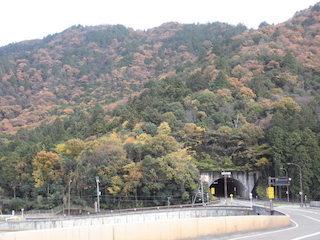 繖山トンネルと山の紅葉名所.jpg