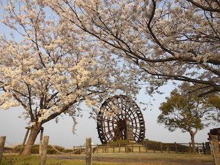 能登川水車と桜公園.jpg