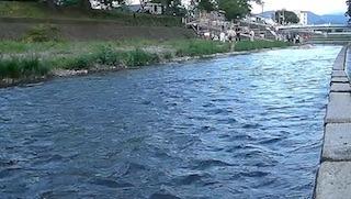 芹川(芹橋から後三条橋間の芹川堤).jpg