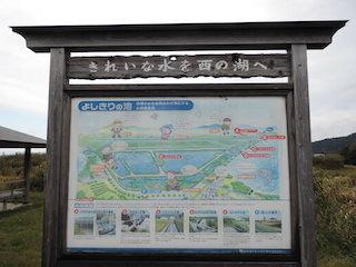 西の湖よしきりの池.jpg
