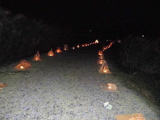 西の湖ヨシ灯り展.jpg