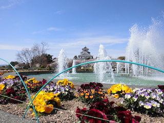 豊公園の噴水.jpg