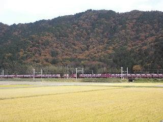 貨物列車の撮り鉄と田園風景.jpg