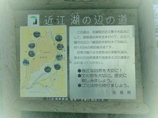 近江湖の辺の道.jpg