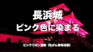 長浜城ピンクライトアップ(ピンクリボン運動の乳がん啓発イベント).jpg