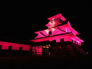 長浜城ピンク色ライトアップ.jpg