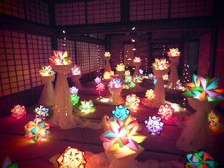 雲の間に咲く虹色の花あかり展.jpg