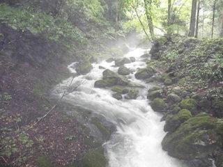 霧がかかって幻想的な川の風景.jpg