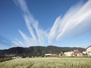 面白い雲の風景(永源寺方面).jpg