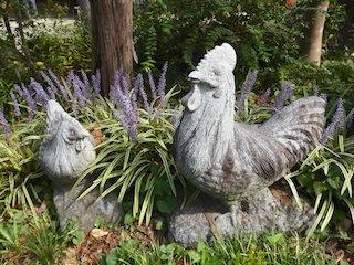 鶏の石材(鶏石).jpg